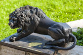 Cast iron lion at the bottom of the stone stairs in Pavlovsk park. Russia. — Stock Photo