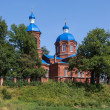 Постер, плакат: Christmas Russia Church of the Nativity of the Blessed Virgin In 1886