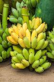 Cacho de bananas — Fotografia Stock