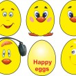 Funny eggs — Stock Vector