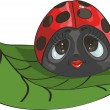 Vector de stock : Ladybug on a leaf
