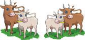 Cow and bull — 图库矢量图片