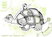 Turtle — Stock vektor