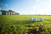 Club de golf — Foto de Stock