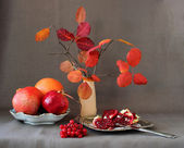 Red fruits, berries, pomegranate divided into parts and autumn leaves in a vase — Stock Photo