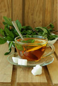 Cup of tea with lemon and mint — Стоковое фото
