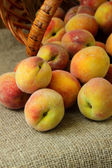 Ripe peaches closeup — Foto de Stock