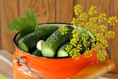 Pickling cucumbers and spices in cans — Stock Photo