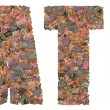 "Batik Collage on the word ""batik"" — Stock Photo"