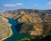 Douro — Stock Photo