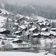 Swiss Village — Stock Photo