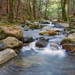Stock Photo: Flowing River