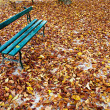 Bench in a park on fall season — Stock Photo
