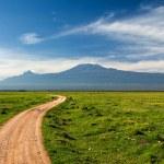 Road to Kilimanjaro — Stock Photo