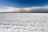 Snow Field — Stock Photo
