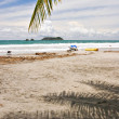 Manuel Antonio Beach — Stock Photo #33792889