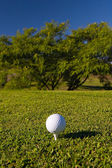 Golf ball on tee — Stock Photo