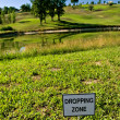 Stock Photo: Dropping Zone