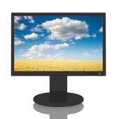 Monitor with Landscape Image — Stock Photo