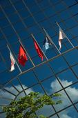 Five flags on glass building near tree — Stock Photo