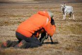 Fotograf i orange med bild av renar — Stockfoto