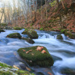 Full-flowing stream — Stock Photo