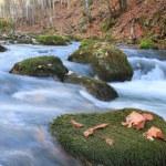 Power of autumn river — Stock Photo