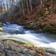 Full-flowing river — Stock Photo