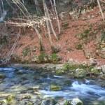 River among autumn landscapes — Stock Photo
