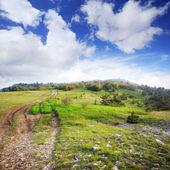 Rural road through Crimean landscape — Stock Photo