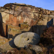 Stock Photo: Millstone in old quarry