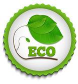 Green ECO Label — Stock Photo