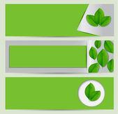 Eko zielony sztandar z liści — Wektor stockowy