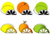 Naszkicowanych owoców cytrusowych — Wektor stockowy