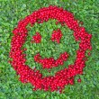Red Currants Smiley — Stock Photo