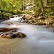 Smokey River — Stock Photo
