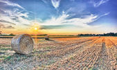 Bales Of Straw Sunset — Stock Photo