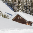 Winter Scenery With Wooden Hut and Trees — Stock Photo