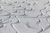 Curvy Ski Tracks In The Snow — Stock Photo