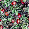 Rosehip Seamless Pattern  — Stock Photo