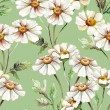 Feverfew Seamless Pattern  — Stock Photo
