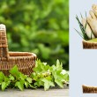 Background with empty basket — Stock Photo #33132311