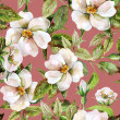 Stock Photo: Wild Roses Seamless Pattern