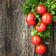 tomatoes — Stock Photo #33715867
