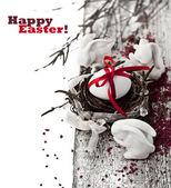 Velikonoční vejce hnízda — Stock fotografie
