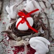 Easter Eggs Nest — Stock fotografie