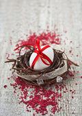 Velikonoční vajíčko hnízdo — Stock fotografie