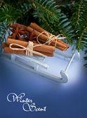 Cinnamon sticks and stars anise — 图库照片