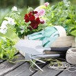 Gardening Time — Stock Photo
