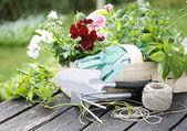 Gardening Time — Stock Photo